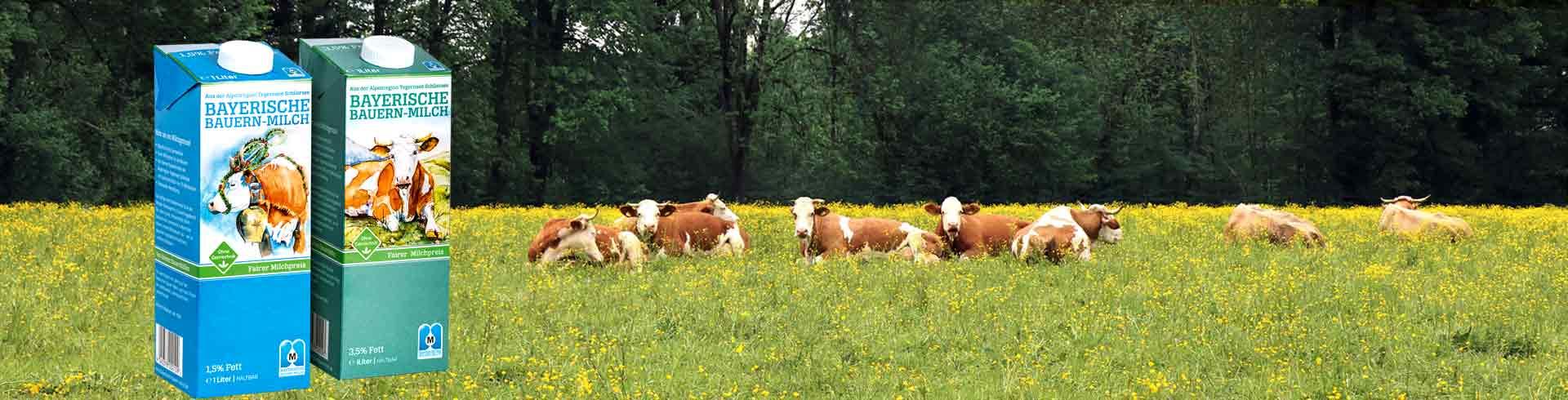 Bayerische Bauern-Milch - Schmeckt wia dahoam