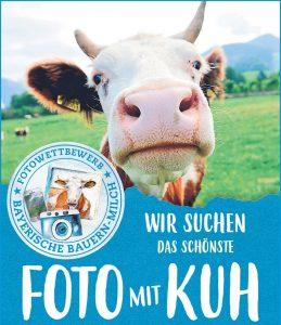 Wir suchen das schönste Foto mit Kuh